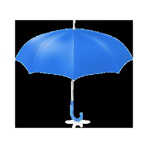 Insurance IT Services